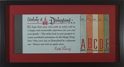 Disneyland Tickets Memorabilia - Jumbo-Size 3D Ticket Book Shadow Box - 11 /8 x 20 3/8 x 1 1/4
