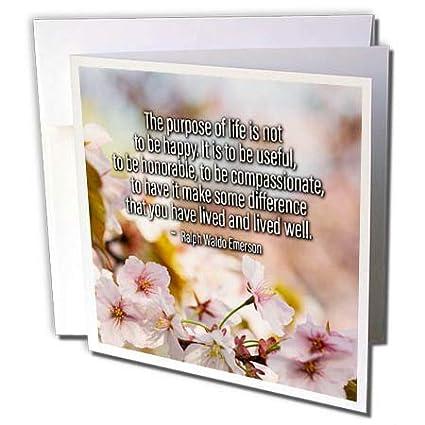 Amazon 3drose Alexis Design Quotes About Life Sakura