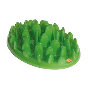 GREEN Interactive Feeder, Large