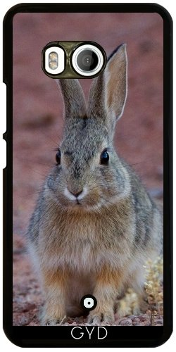 Funda para Htc U11 - Animales Lindo Conejo by WonderfulDreamPicture