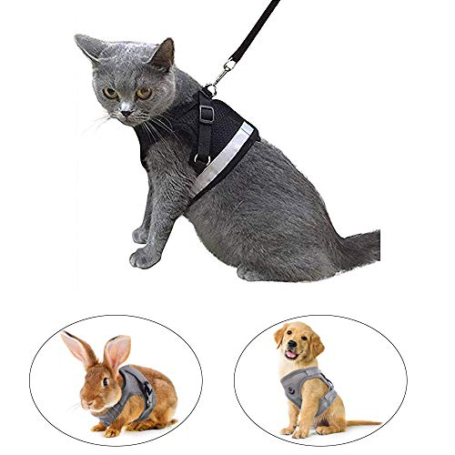 Kamots Beauty Escape Proof Cat Harness and Leash for Walking Adjustable Soft Mesh Pet Vest with Lead for Kitten Puppy Rabbit -(Black,XS)
