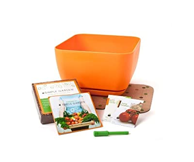 Fertile Earth Simple Garden SG-Start-W 12-Inch Basil and Tomato Gardening Squared Starter Kit, Orange