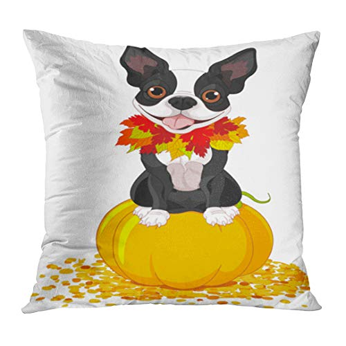 DTTOT Throw Pillow Cover Dog Boston Terrier Sits on Pumpkin Halloween Cartoon Costume Animals Decorative Pillow Case Home Decor Square 20x20 Inches Pillowcase ()