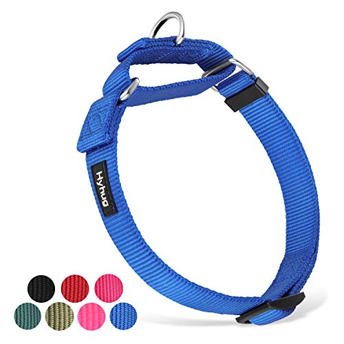 Hyhug Great Fabric Durable and Not Escapable Clip Martingale Dog Collar for Small Boy and Girl Dogs - Daily Use Walking,Professional Training.(Medium,Bright Blue)