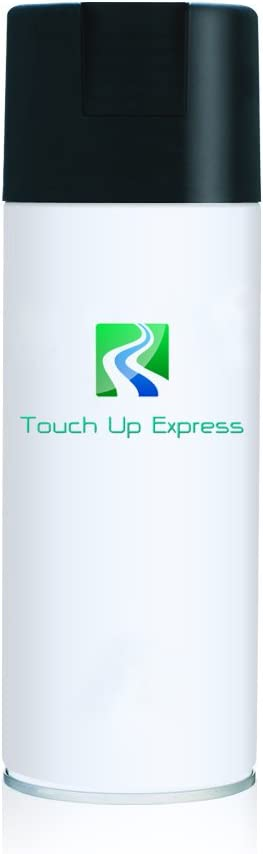Touch Up Express Paint for Infiniti G35 KY0 Chrome Silver Metallic 12oz Aerosol Spray Touch Up