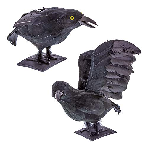 Halloween Haunters 2 Realistic Large 14 Feathered Black Crows Prop Decoration - Scary Standing Flying Birds, Blackbirds, Ravens Feather Wings - Tree, Haunted House, Graveyard, Tombstone Display