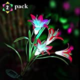 Digiroot Solar Garden Stake Lights - 2 Pack Outdoor Lily Flower Solar Powered Lights, Multi-Color Changing LED Solar Stake Lights for Garden, Lawn, Patio, Backyard Decoration (Purple/Pink)