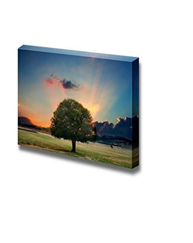 Alone Tree in Sunset Dramatic Nature Landscape Wall Decor ation