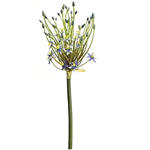 """Melrose Club Pack of 12 Artificial Spider Allium Stems with Blue Blooms 31"""" 6"""