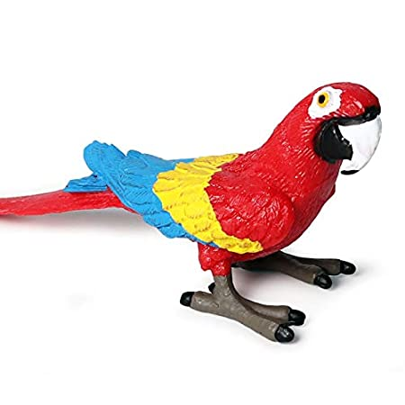 Lana Toys Birds Model Toucan Blue-Footed Booby Seagulls Ostrich Parrot Animal Figure Suitable for Animal Zoo Dinosaur World Scene Plastic Model Decor Collector Toy Gift