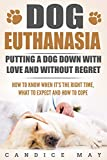 Dog Euthanasia: Putting A Dog Down With Love and