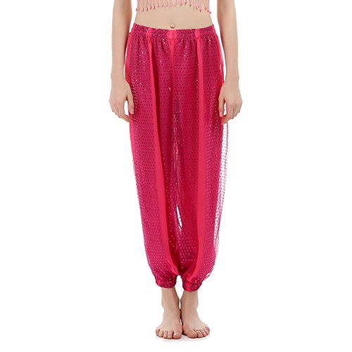 JEANSWSB Red Rose Lightspot Belly Dance Long Pants 120D Chiffon Indian Costume Trousers Adult (Pink Indian Sari Adult Costume)
