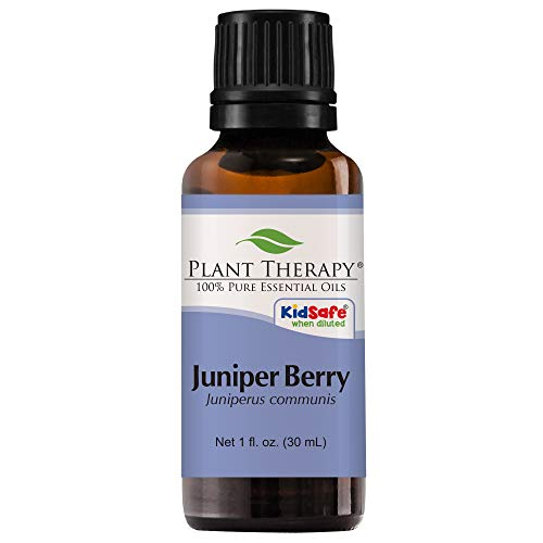 Plant Therapy Juniper Berry Essential Oil   100% Pure, Undiluted, Natural Aromatherapy, Therapeutic Grade   30 Milliliter (1 Ounce)