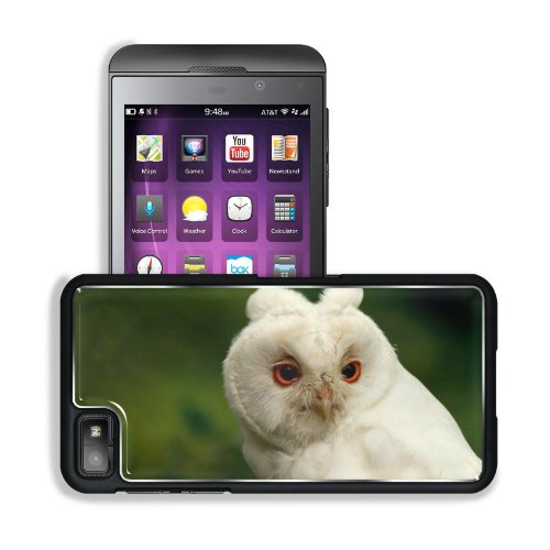 Green Background White Owl Head Beak Eyes BlackBerry Z10 Snap Cover Premium Aluminium Design Back Plate Case Customized Made to Order Support Ready 5 3/16 inch (131mm) x 2 5/8 inch (67mm) x 4/8 inch (13mm) Liil BlackBerry Z 10 Professional Metal Cases BlackBerry_Z10 Touch Accessories Graphic Covers Designed Model HD Template Wallpaper Photo Jacket Wifi 16gb 32gb 64gb Luxury Protector Wireless Cellphone Cell Phone