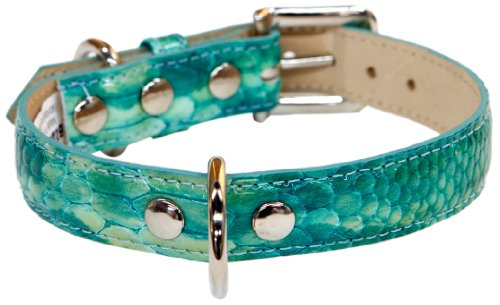 - Bluemax Genuine Leather Patent Snake Dog Collar, 5/8-Inch by 10-Inch, Teal