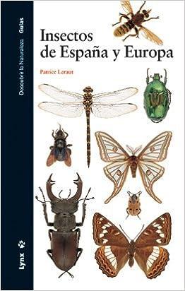 Insectos de España y Europa (Descubrir la Naturaleza): Amazon.es: Leraut, Patrice, Hodebert, Gilbert, Blanchot, Philippe, Cabrero Roura, Oriol, Losantos Sistach, Núria: Libros