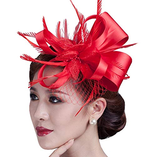 Cambric Fascinator Wedding Evening Party Derby Hat with Veil Feather Hair Clip ()
