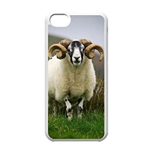 linJUN FENGProtection Cover Hard Case Of Sheep Cell phone Case For iphone 4/4s