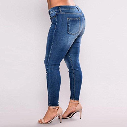 Jeans Pants Donna Lilicat Blue Dark 5PYSnn1q