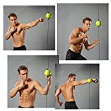 MetaBall Boxing Ball Speed Reflex Training Punching