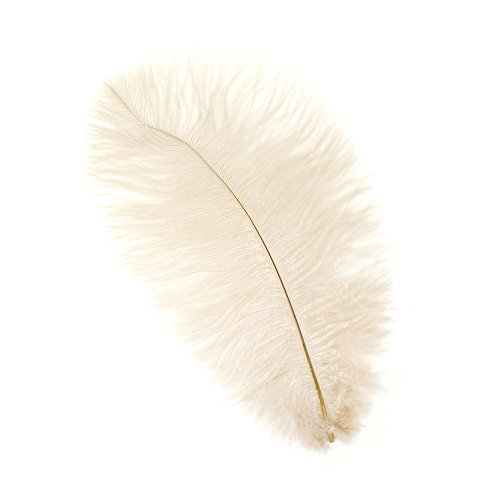 - Zucker Feather (TM) - Ostrich Feathers-Drabs Selected - Beige
