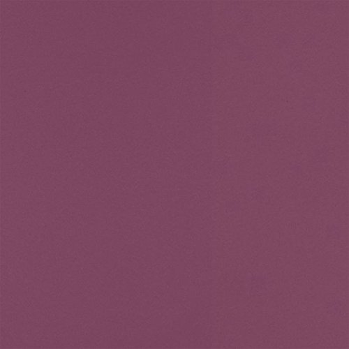 12 x 12 Cardstock - Vintage Plum (50 Qty) | Perfect for Holiday crafting, invitations, scrapbooking and so much more! | 1212-C-104-50 (Plum Shiny)