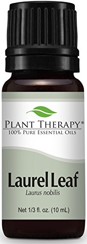 Plant Therapy Laurel Leaf Essential Oil 10 mL (1/3 oz) 100% Pure, Undiluted, Therapeutic Grade ()
