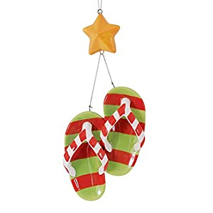 41Gemdg74WL._SS300_ Flip Flop Decorations
