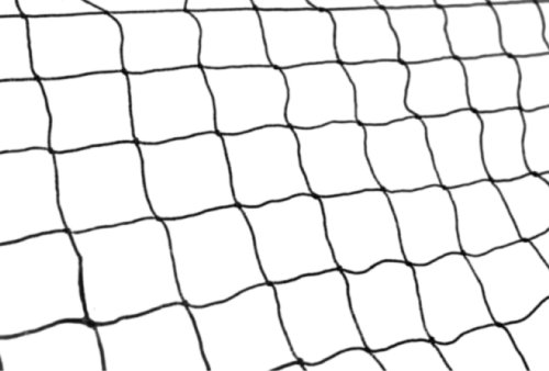 50′ X 50′ Net Netting for Bird Poultry Aviary Game Pens, My Pet Supplies