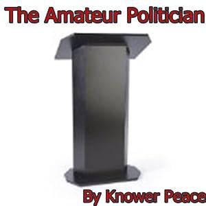 The Amateur Politician Audiobook