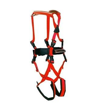Amazon.com: Child Gait Trainer - Gait Training Harness for Special