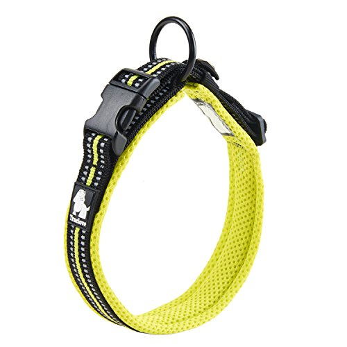 Pettom Adjustable Nylon Pet Collar Padded 4/5 Large 3M Reflective Dog Collar with Ring(Green, Large)