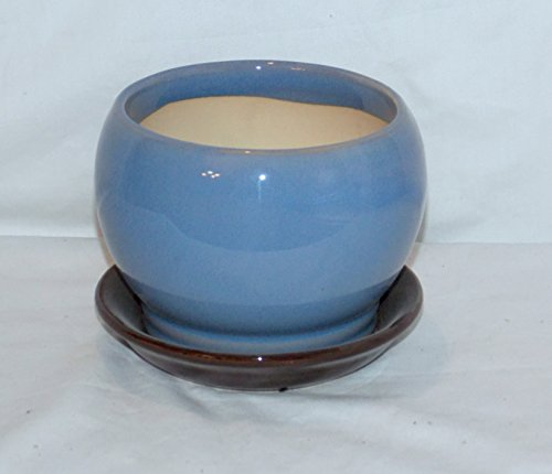 """New 5"""" Pot Belly Blueberry & Brown Colored Planter Plant Pot & Saucer"""