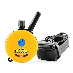 Educator E-Collar Remote Dog Training Collar 1