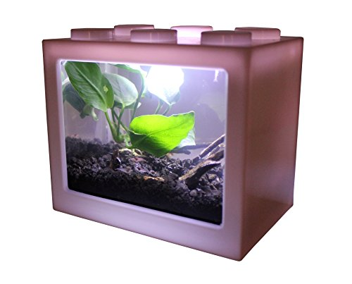 AquaticHI Nano Tank, Extra Small, Mini Desktop Aquarium / Planted Tank / Terrarium / Fish Tank, Perfect for the Kids, Office or Home for Small Betta Fish, Shrimp, Insects and Succulents (White)