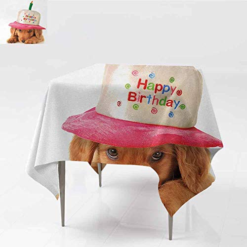 (DILITECK Decorative Textured Fabric Tablecloth Kids Birthday Cute Puppy Wearing a Party Cone Shaped Hat with Candlestick Party Greetings Washable Tablecloth W60 xL60 Multicolor)