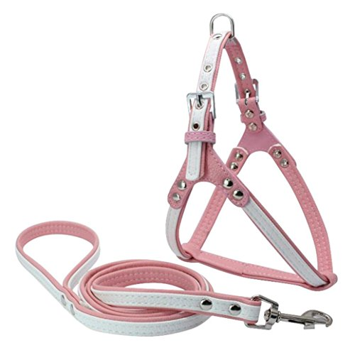 Eagle Dry Goods (DEESEE(TM) Pet Safe Control Harness Dog Cat Soft Vest Walk Collar Safety Strap (White))