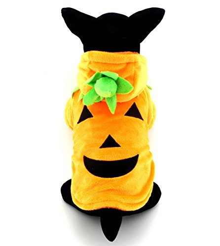 Ranphy Small Pet Dog Outfit Cat Clothes Fleece Pumpkin Halloween Costume Clothing Fancy Dress Orange L