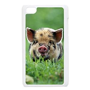 funny pig DIY Case Cover for Ipod Touch 4,funny pig custom case cover series 11