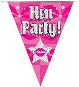 Pink Hen Party Banner Holographic 9 ft Fancy Dress Party Decoration Accessories