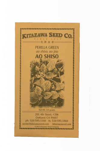 Green Perilla - Ao Shiso