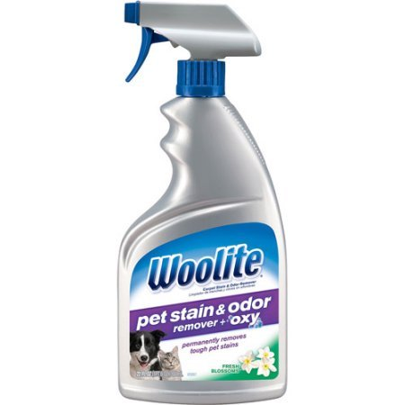 Woolite Stain Remover Spray Bottle product image