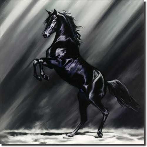 Equine Horse Art Ceramic Accent Tile 8 x 8 Kitchen Shower Backsplash Dark Splendor by Kim McElroy