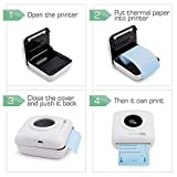 3 Color Direct Thermal Paper for