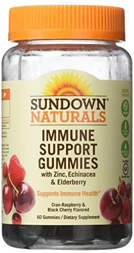 Sundown Naturals Immune Support Gummies Cran-Berry and Black Cherry Flavored - 60 ct, Pack of 2 (Sundown Gummy Vitamin)