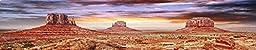 Reptile Habitat, Terrarium Background, Cool Desert Sky - 14 Tall\