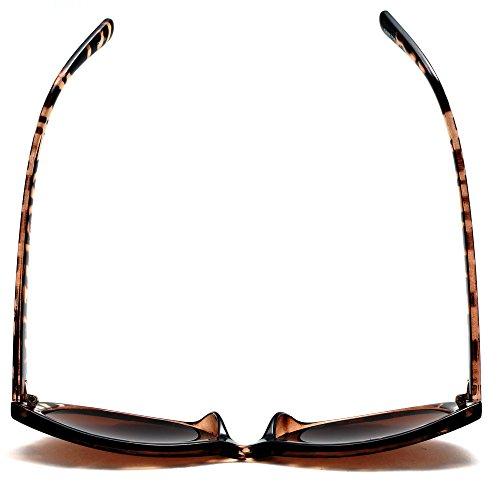 Women's Bi-Focal Sun-Readers Fashion Wayfarer Sunglasses Brown Tortoise Rx 2.50