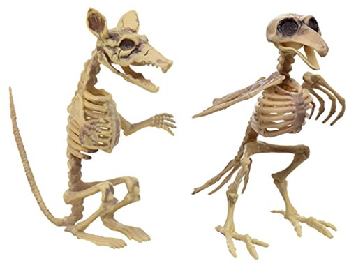 Rat and Bird Skeleton Halloween decoration