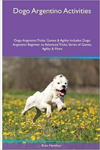 Buy Dogo Argentino Activities Dogo Argentino Tricks Games Agility Includes Dogo Argentino Beginner To Advanced Tricks Series Of Games Agility And More Book Online At Low Prices In India Dogo