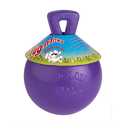 Tug N Toss Ball Color Purple Size